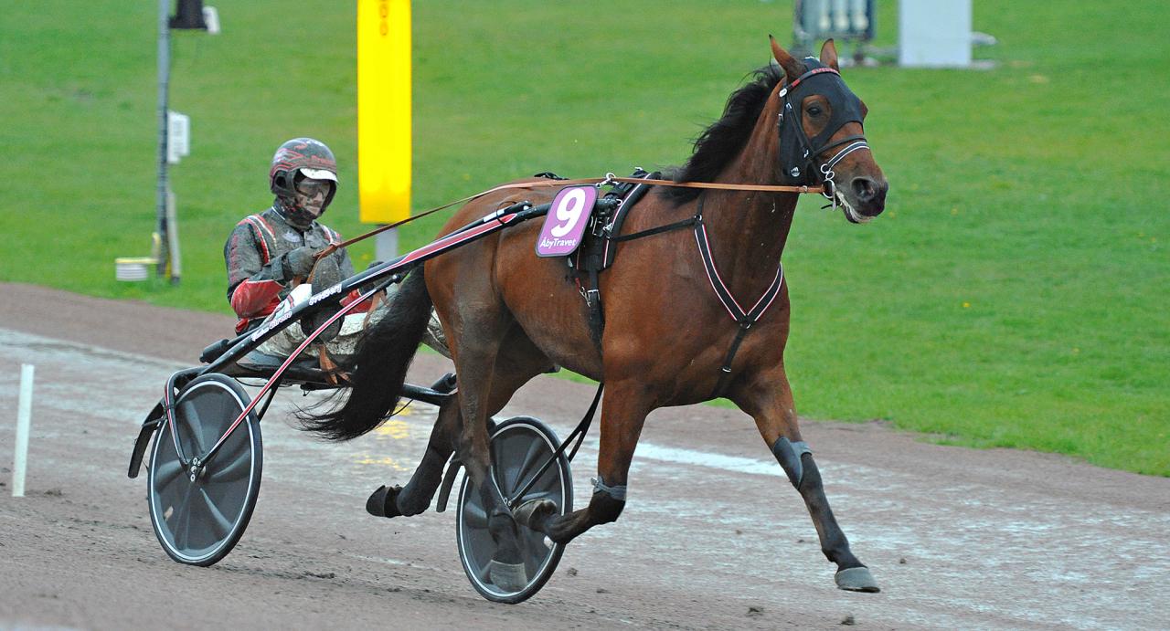 Winner Bac är en av omgångens två spikbud. Foto Simon Hagen