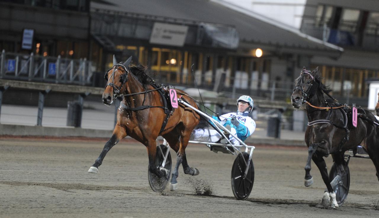 Daniel Redéns Alaska Kronos vann Derbystokval. Foto Adam Ström/stalltz.se