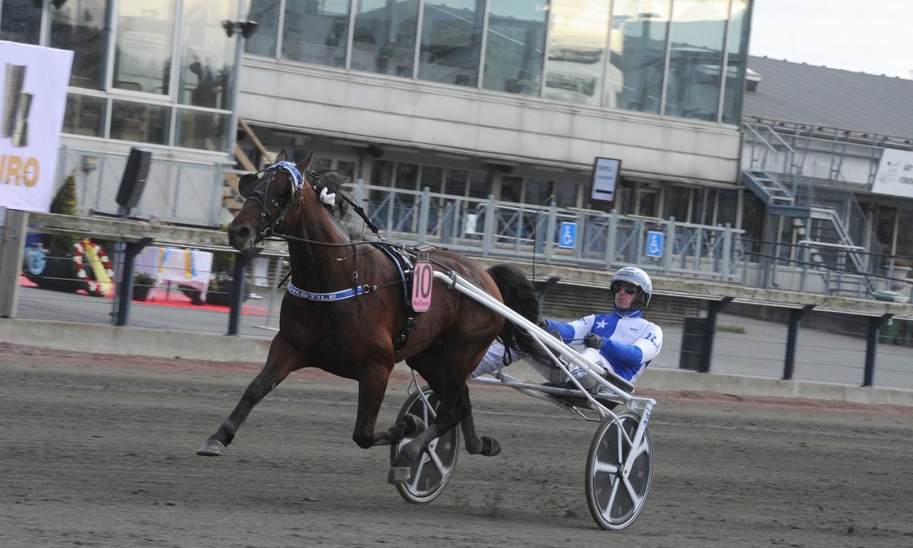 Cokstile och Christoffer Eriksson vinner Algot Scotts Minne. Nu byter ägaren kusk och uppstallningsplats för hästen. Foto: Adam Ström/StallT.Z.se