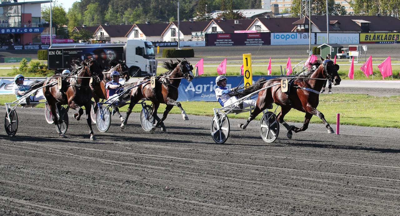 Christoffer Eriksson och Cokstile vann både försök och final i Elitloppet ifjol. Foto Mathias Hedlund/Sulkysport