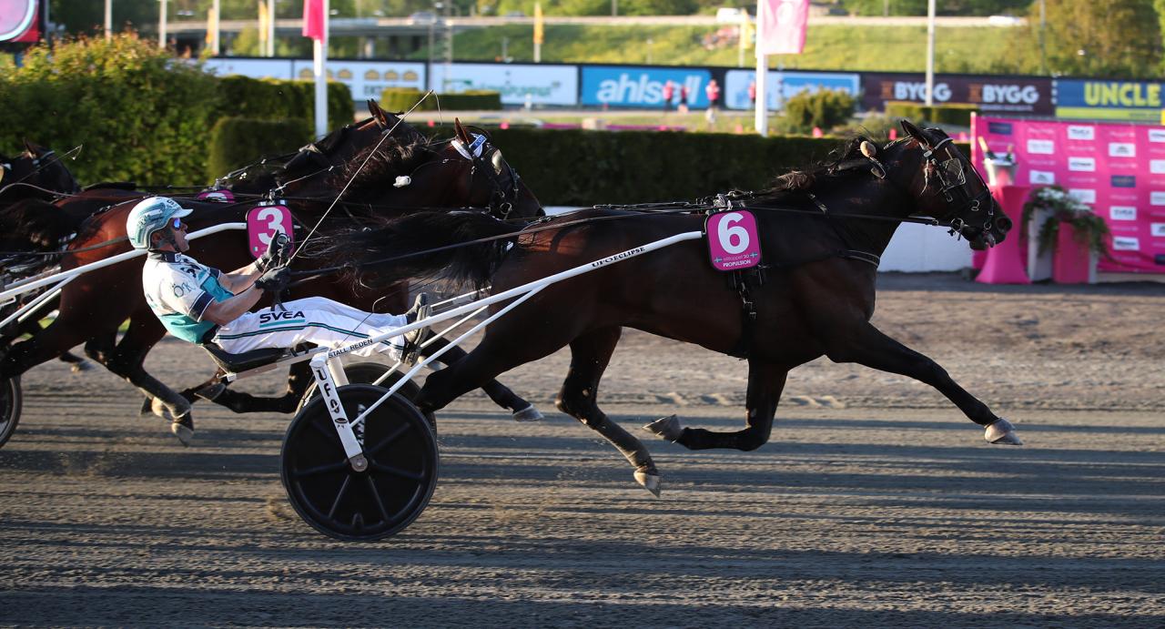 Propulsion spurtar till vinst för Örjan Kihlström i Elitlloppet. Foto: Mathias Hedlund/Sulkysport