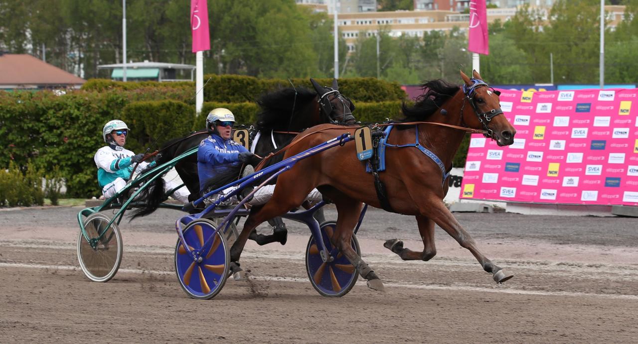 Pewdiepie och Björn Goop spurtade till vinst i Lilla Harpers där förstapriset uppgick till 100.000 kronor. Foto: Mathias Hedlund/Sulkysport