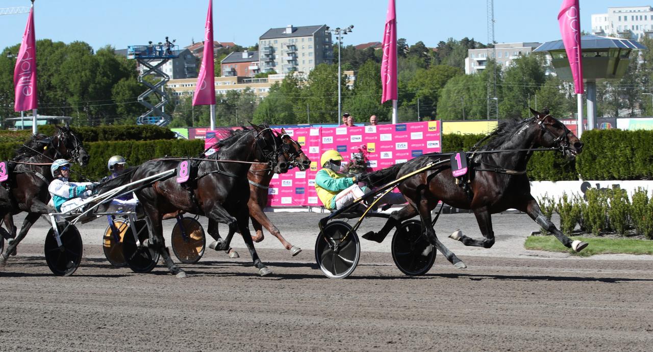 Vivid Wise As vinner lätt för Alessandro Gocciadoro. Foto: Mathias Hedlund